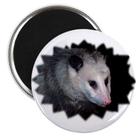 Awesome Possum Magnet