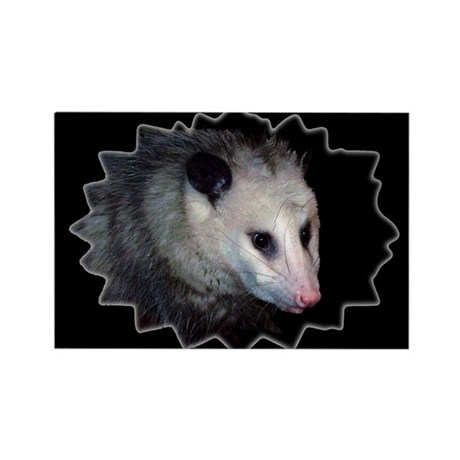 Awesome Possum Rectangle Magnet (100 pack)