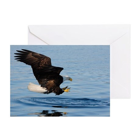 Bald Eagle Fishing Greeting Cards (Pk of 10)
