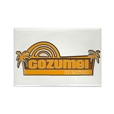 Dive cozumel Rectangle Magnet (10 pack)