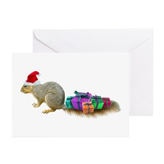 http://i1.cpcache.com/product/954946964/squirrel_tail_presents_greeting_cards_pk_of_20.jpg?height=240&width=240
