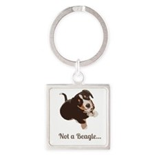 Not a Beagle - Entlebucher Mtn Dog Keychains