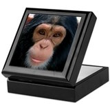 Cute Monkey Keepsake Box