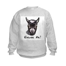 Pygmy Goat Excuse me? Jumpers