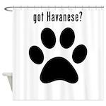got Havanese? Shower Curtain