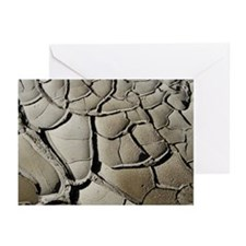 Paria River Mud Patterns Greeting Cards (6)