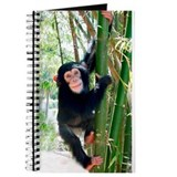 Chimpanzee Journals
