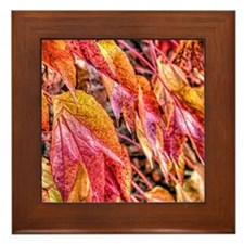 Fall Leaves Framed Tile