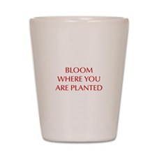 BLOOM-OPT-RED Shot Glass