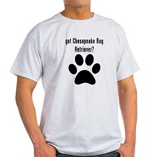 got Chesapeake Bay Retriever? T-Shirt