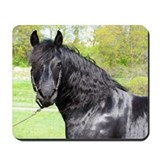 """Friesian 6"" Mousepad"