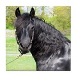 &quot;Friesian 6&quot; Tile Coaster