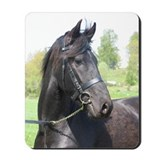 """Friesian 7"" Mousepad"