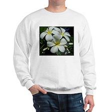 Yellow Center Plumeria Sweatshirt