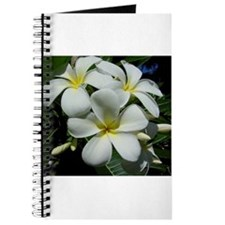 Yellow Center Plumeria Journal