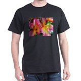 Pink Yellow Plumeria T-Shirt