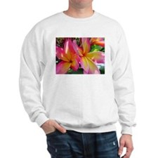 Pink Yellow Plumeria Sweatshirt