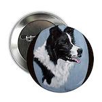 Border Collie Profile Button