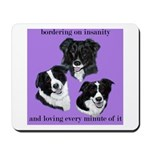 Bordering on Insanity (Border Collies) Mousepad