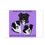 Bordering on Insanity (Border Collies) Postcards (