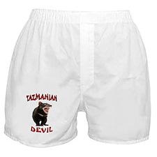 TAZMANIAN DEVIL Boxer Shorts