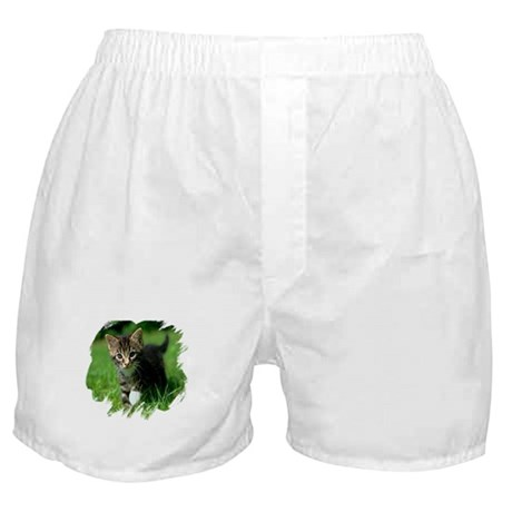 Baby Kitten Boxer Shorts