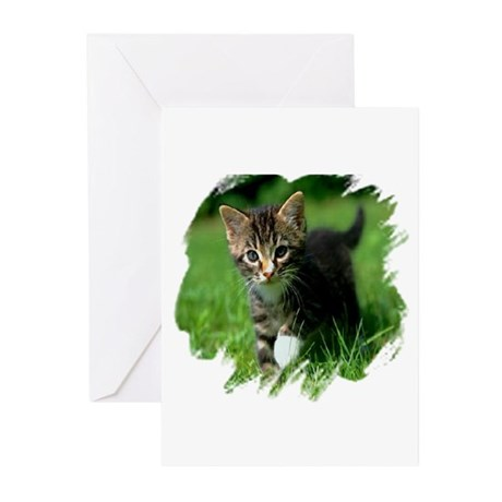 Baby Kitten Greeting Cards (Pk of 10)