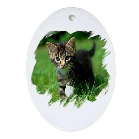 Baby Kitten Oval Ornament