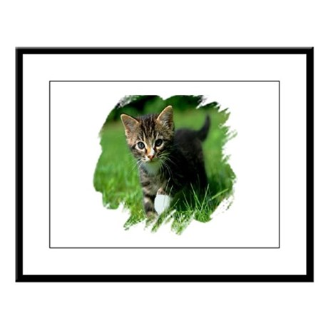 Baby Kitten Large Framed Print