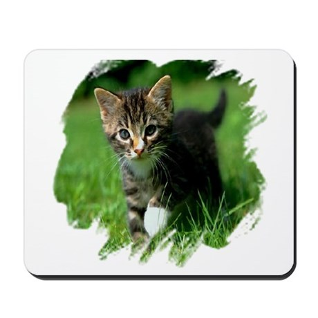 Baby Kitten Mousepad