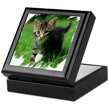 Baby Kitten Keepsake Box