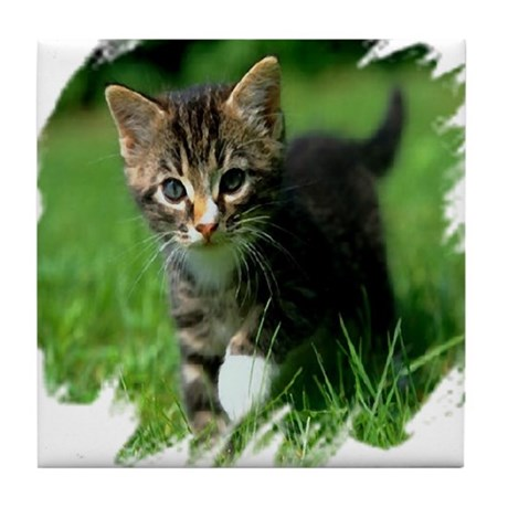 Baby Kitten Tile Coaster