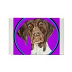 German Shorthair Pointer Head Rectangle Magnet (10