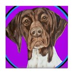 German Shorthair Pointer Head Tile Coaster