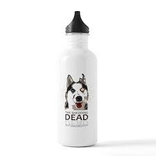 Shedding Dead Water Bottle