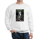 Cataract Falls  Sweatshirt