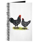 Java Rooster and Hen Journal