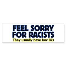 ...sorry for racists... Bumper Car Sticker
