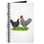 Marans Rooster and Hen Journal