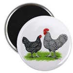 Marans Rooster and Hen Magnet