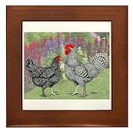 Marans Chickens Framed Tile
