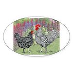 Marans Chickens Oval Sticker