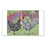 Marans Chickens Rectangle Sticker