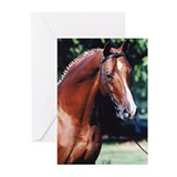 Trakehner Greeting Cards (Pk of 10)
