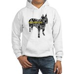 Boston Collage Hooded Sweatshirt