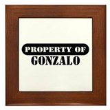 Property of Gonzalo Framed Tile