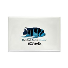 Funny Fish aquarium Rectangle Magnet