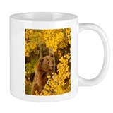 Autumn Grizzly Mug