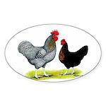 Black Sex-link Chickens Oval Sticker