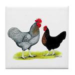 Black Sex-link Chickens Tile Coaster